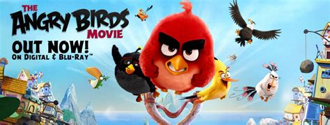 the angry birds movie dvd release date august 16 2016 the angry birds movie 2 release date rumors rovio