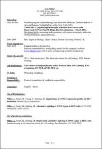 common skills to put on a resume sles of resumes