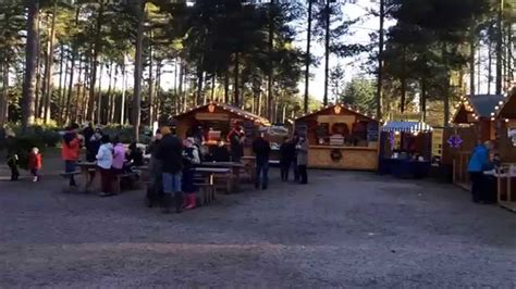 cannock chase visitor centre christmas tree sales youtube