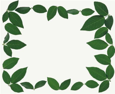 printable green leaves free printable tags templates leaf templates for