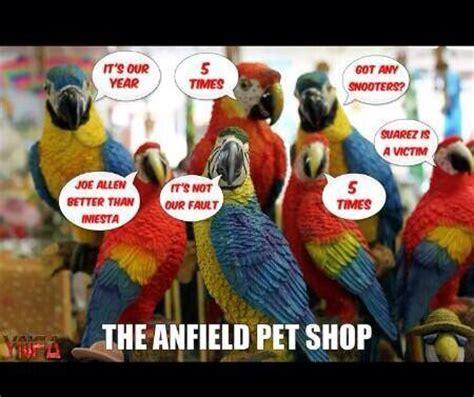 Liverpool Memes - image gallery liverpool memes 2015