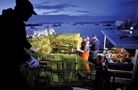 lobster boat sternman consider the lobstermen vqr online