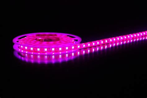 Led Light Strips by China Led Light Purple China Led Light Led Bulbs