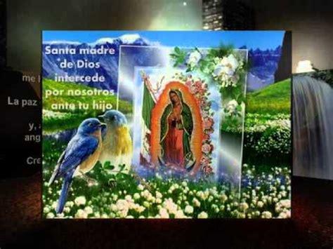 imagenes de la virgen de guadalupe con bendiciones mi virgen ranchera la dinastia de tuzantla michoacan