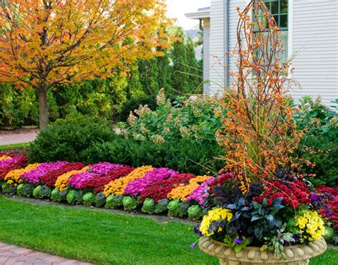 Fall Flower Beds Contemporary Landscape Other By Fall Flower Garden Ideas
