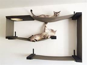 Cool Cat Furniture cat furniture you and your cat will love iheartcats com