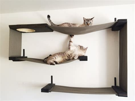 cat furniture you and your cat will love iheartcats com