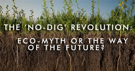 how to a to not dig grounded design by rainer to dig or not to dig are no dig planting methods