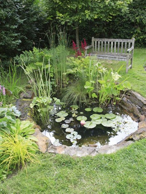 small backyard pond how to create a wildlife pond gardens beautiful and