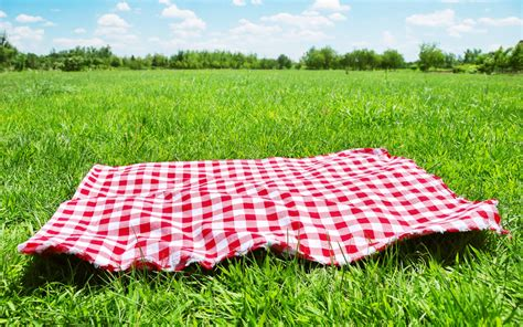 Summer Treat: Tips for a Perfect DIY Picnic