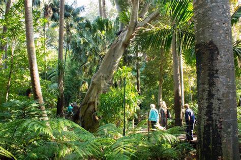 botanic gardens melbourne weekend summer series 2 ibis styles melbourne the
