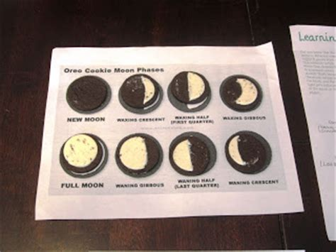 Phases Of The Moon Webquest Worksheet Answer Key
