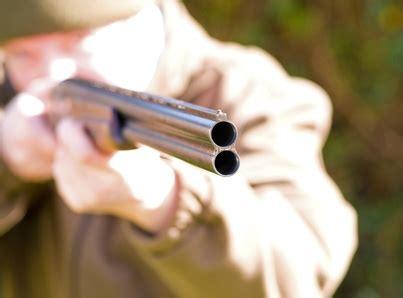 section 790 06 florida statutes florida shotgun length laws legalbeagle com