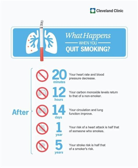 quit smoking clinics in usa i stop quit smoking guide what happens when you quit smoking smoking infographics