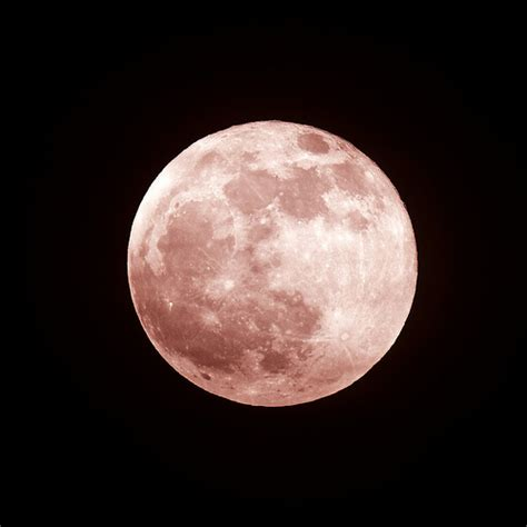 what is a pink moon full pink moon flickr photo sharing