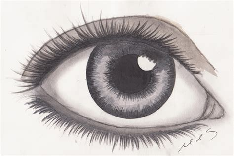 A Drawing Of An Eye by Realistic Eye Drawing By Mhylands On Deviantart