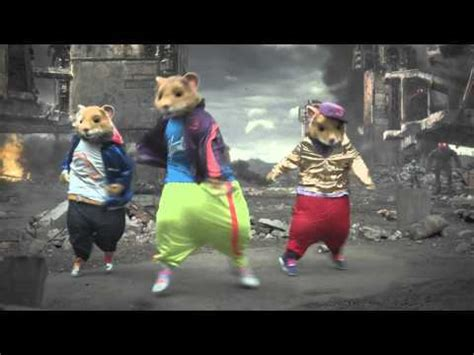 Kia Hamsters Rock Expert Business Insurance Quotes