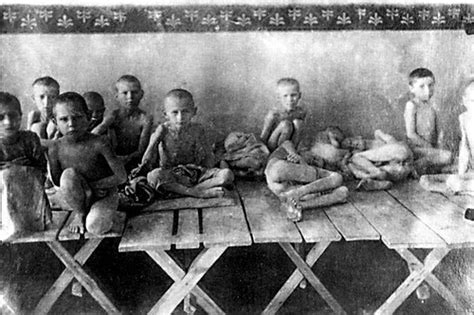 the ukrainian an intimate history of revolution books 14 best images about holodomor genocide by famine on