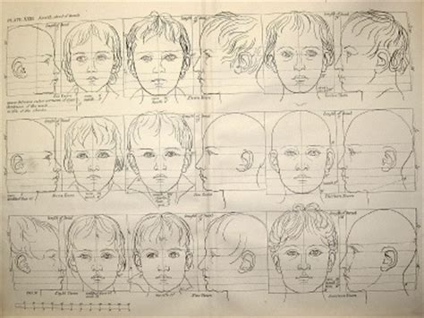 tutorial menggambar anatomi tubuh cara menggambar tubuh manusia secara proposional natural