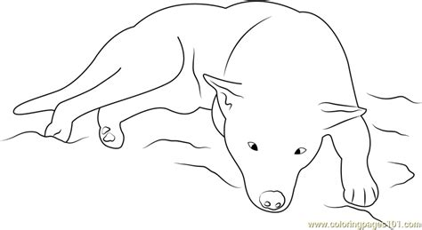 sleeping puppies coloring pages dog sleeping coloring page free dog coloring pages