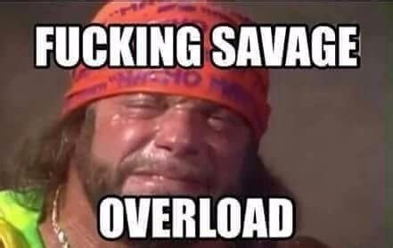 Randy Savage Meme - the 2017 millennial urban dictionary for all non millennials