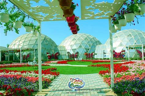 Butterfly Patio by Photos Dubai Butterfly Park Arabian Gazette