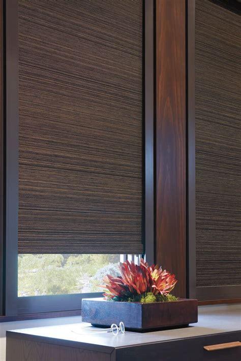 room darkening shade 25 best ideas about room darkening blinds on room darkening shades patio door