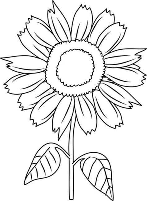 coloring pictures of sunflowers sunflower coloring pages bestofcoloring com