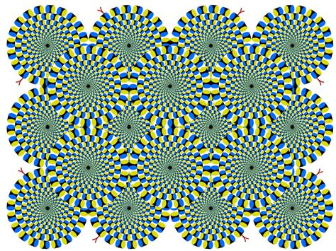 painted river optical illusions