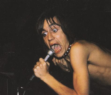iggy pop best songs 276 best iggy and the stooges images on