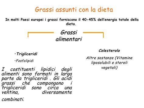 alimenti lipidici pricipali classi di lipidi e fonti alimentari