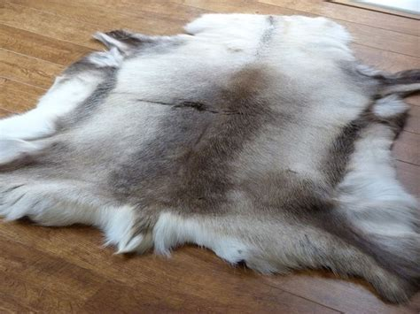 Cowhide Suppliers - fabulous selection of high quality hide rugs from a uk