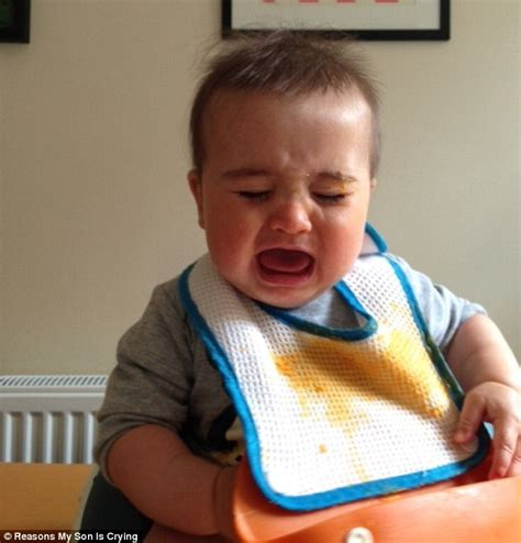 wrong arguments that make leftists cry books parents images of their tearful toddlers mid tantrum