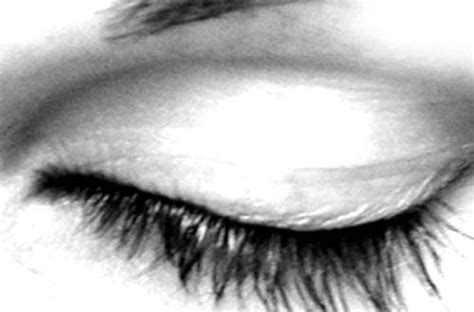Laneige Large Eyeshadow Brush 09 27 sets of free eye brushes for photoshop eyelash iris