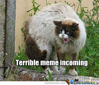 Terrible Memes - terrible meme cat by recyclebin meme center