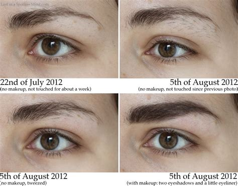 how long before brows grow back with coconut oil growing out eyebrows hair makeup pinterest growing