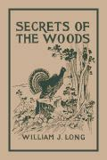 habits haunts and anecdotes of the moose and illustrations from classic reprint books yesterday s classics