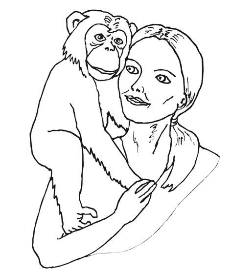 chimpanzee coloring page coloring home