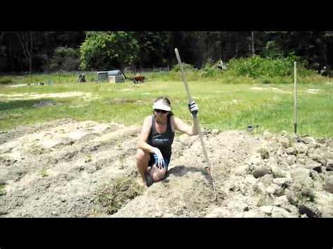 survival gardening survivalperformancecom