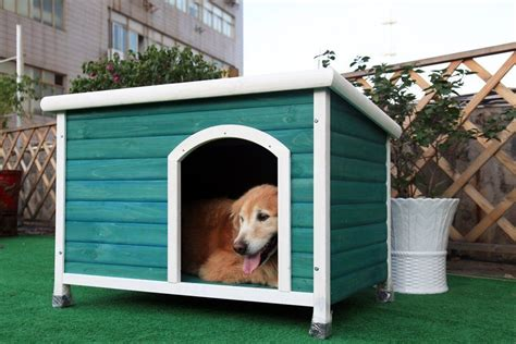 best outdoor dog houses what s the best dog house our top 5 list veterinary place