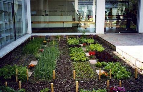 horticultura urbana huerto balcon entrevista con santiago cuerda de huertoscompartidos es