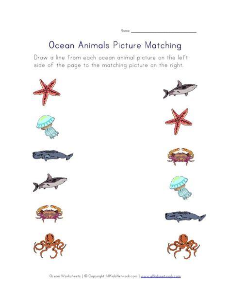 worksheets for preschool best free printable