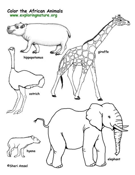 african landscape coloring page pinterest the world s catalog of ideas