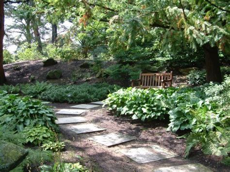 Shady Backyard Landscape Ideas Introduction To Shade Gardening