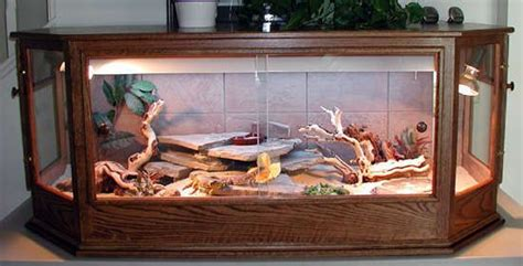 how to remove lizard from room 25 best ideas about bearded cage on bearded terrarium guinea pigs