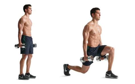 dumbbell bench lunges the fitness oracle exercise directory