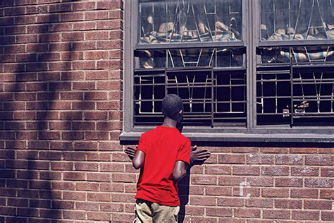 pink houses brooklyn why new york s housing projects may be on their way to extinction new york magazine
