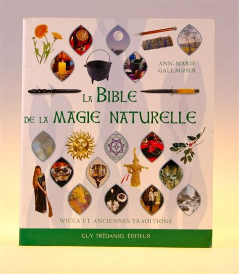 2914303017 manuel d exorcismes de l eglise manuel d exorcismes de l 233 glise livres esot 233 riques