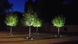 pflanzen led beleuchtung anstrahlung im b 252 rogeb 228 ude und verwaltung design led