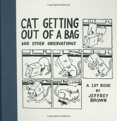 cats are and more observations ebook